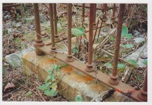 Carrigaline Churchyard, 001