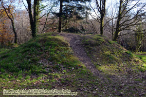"""Binne's Grave/The Giant's Grave (http://www.technogypsie.com/reviews/?p=14289). Folklore: Binne the Giant (http://www.technogypsie.com/faerie/?p=763). Curraghbinny Forest (http://www.technogypsie.com/reviews/?p=14283) - County Cork, Ireland. Walking with the Ancestors - 2013 - Saturday, November 30, 2013. """"Curraghbinny: Forest Recreation Area - Welcome to Curraghbinny Wood, a mixed woodland that covers an area of 35 hectares. The forest sits on a promontory overlooking Cork harbour to the east and north east, Lough Beg to the north west, and the mouth of the Owenabue River and the village of Crosshaven to the south. The highest point is 74 meters. The name 'curraghbinny' or Corra Binne in Irish, may be derived from the legend of a giant named Binne, whose buial chamber can be found at the top of the hill ('Corra'). This great cairn is attributed to Bronze Age man (circa 1500 B.C.E.) and is known locally as the 'Giant's Grave'. There is a wonderful diversity of tree species in these woods, including: oak, beech, birch, ash, Scots pine, eucalyptus, sycamore, European larch, Silver fir, Scots pine, and Norway spruce. Other flora include a selection of flowering shrubs and ornamental trees. The ground cover has an abundance of wild plants associated with old woodlands, such as bracken, bramble, and bilberry, wood sorrel, foxgloves, and many more. Fauna that may be spotted if you are vigilant include badger, fox, rabbit, hare, and stoat. A northern section of the wood falls within Cork Harbour SPA (Special Protection Area) owing to the sheltered conditions and habitat provided by the greater harbour for large numbers of sea birds. It is possible to observe some of these species from the viewpoints that open out over the water from the woods. Heronries have been reported in the past in the tall trees. A number of bat species have also been identified in the wood if you find yourself here after dusk. There are two waymarked trails to adi you in your exploration o"""